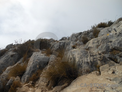 Javea cloud rock montgo plant.