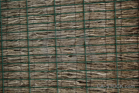 Javea texture bamboo spain europe.