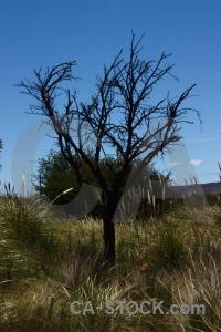 Jujuy branch unesco quebrada de humahuaca landscape.