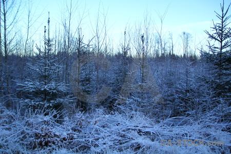 Karlskrona cyan blue europe frost.