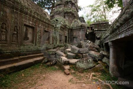 Khmer angkor fungus tomb raider stone.