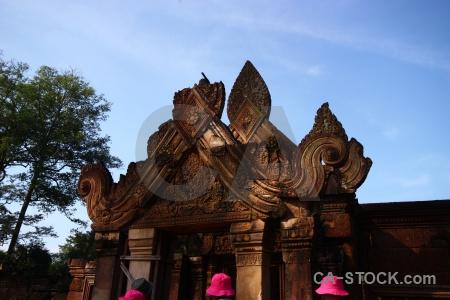 Khmer ruin siem reap southeast asia tree.