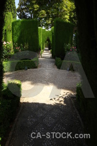 La alhambra de granada fortress park pathway black.