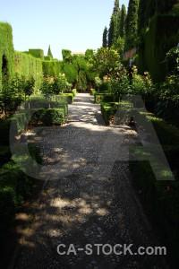 La alhambra de granada path pathway park green.