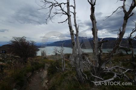 Lago grey landscape dead day 4 water.