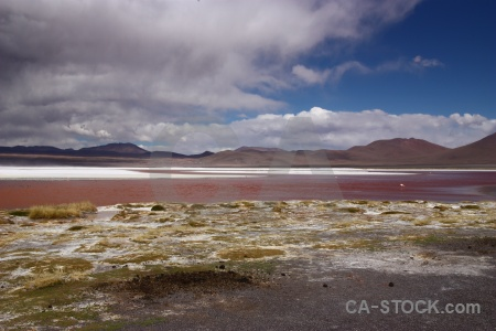 Laguna colorada mountain bolivia lake salt.
