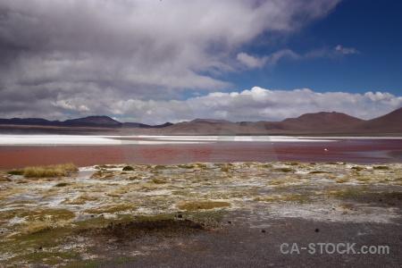 Laguna colorada mountain bolivia lake salt.