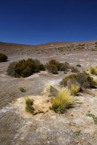 Laguna honda andes landscape south america bolivia.