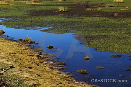 Lake andes atacama desert grass el tatio.
