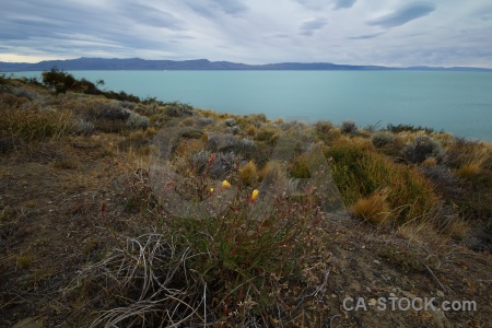 Lake argentino grass patagonia sky water.