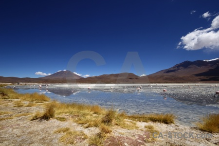 Lake cloud andes salt landscape.