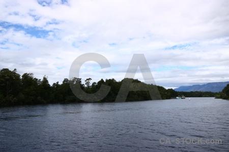 Lake manapouri mountain tree new zealand lake.