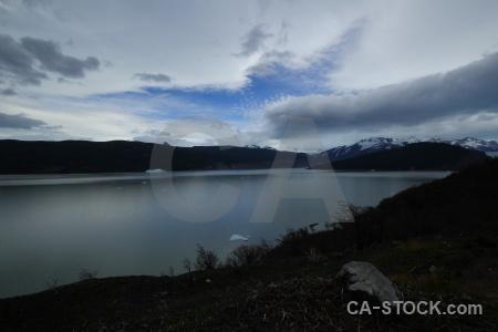 Lake tree cloud lago grey patagonia.