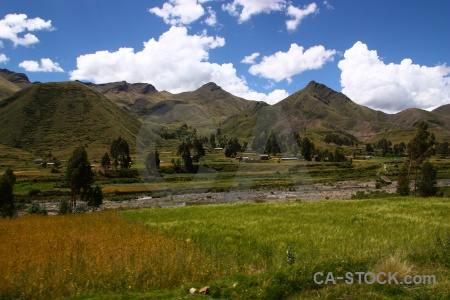 Landscape andes altitude grass south america.