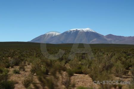 Landscape bush snowcap south america argentina.