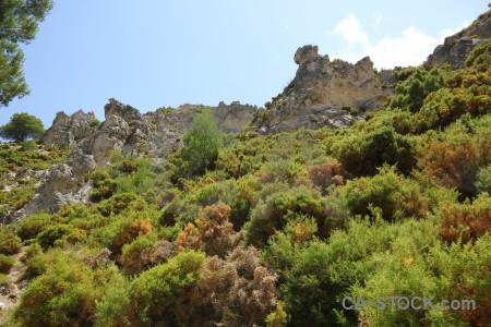 Landscape cliff spain tree rock.