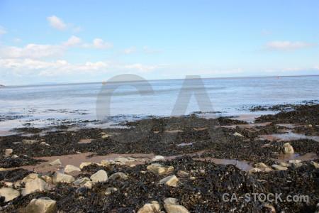 Landscape rock coast seaweed.