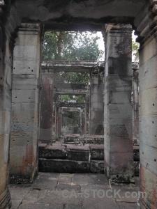 Lichen angkor column tree pillar.