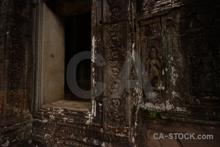 Lichen fungus carving temple prasat bayon.