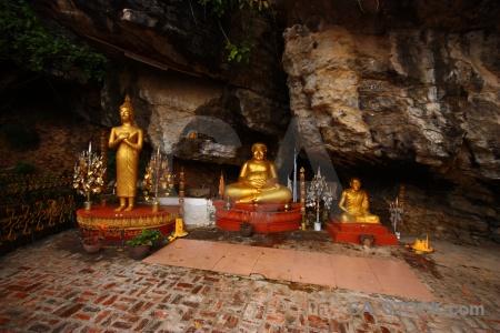 Luang prabang tree asia unesco mount phu si.
