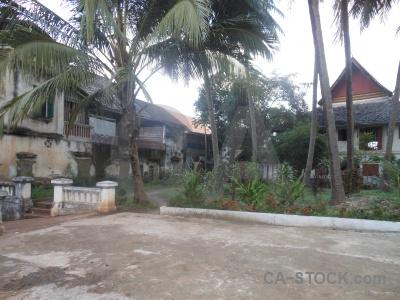 Luang prabang unesco southeast asia palm tree building.