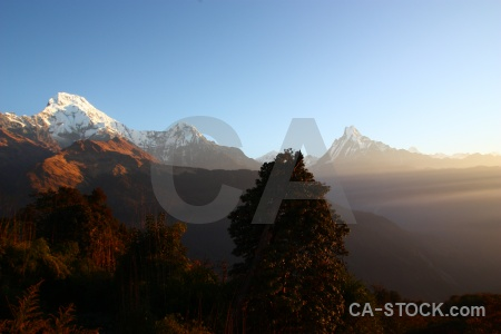 Machapuchre nepal annapurna sanctuary trek asia sunset.