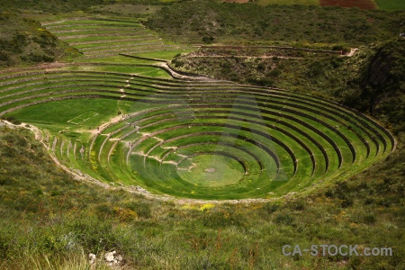 Maras circle moray inca bush.