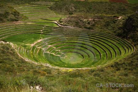 Maras circle moray inca bush.