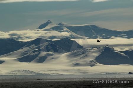 Marguerite bay antarctic peninsula sea snowcap cloud.