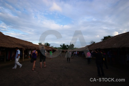 Market southeast asia person village tree.