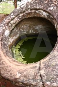 Megalithic fungus lichen pool laos.
