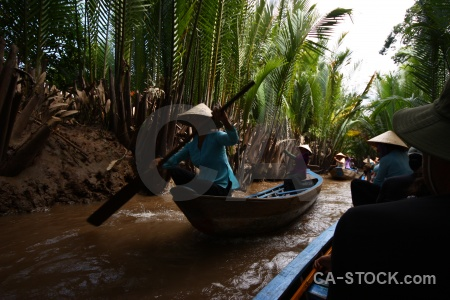 Mekong delta my tho boat palm tree mangrove.