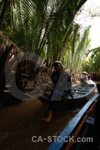 Mekong delta water island hat root.