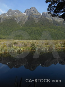 Mirror lakes mountain new zealand tree south island.