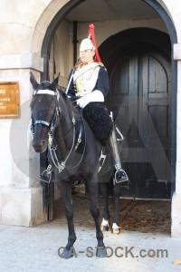 Model person male animal horse.