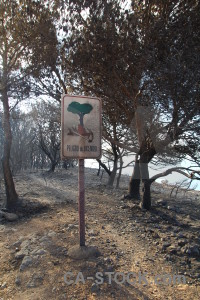 Montgo fire sign burnt spain europe.