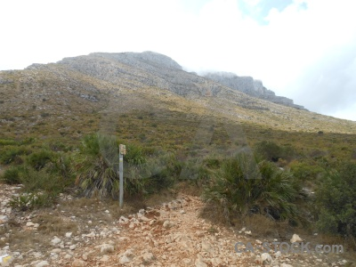 Montgo rock javea plant sky.