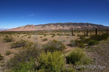 Mountain cactus landscape salta tour 2 altitude.