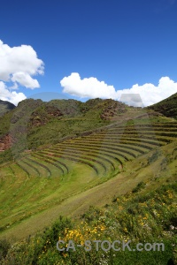 Mountain grass terrace andes inca.
