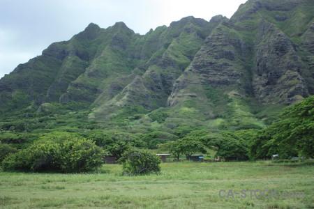 Mountain green field.