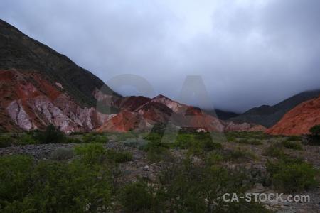 Mountain landscape bush purmamarca argentina.