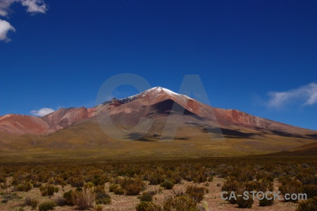 Mountain volcano andes altitude bush.