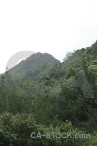 Mountain white green.
