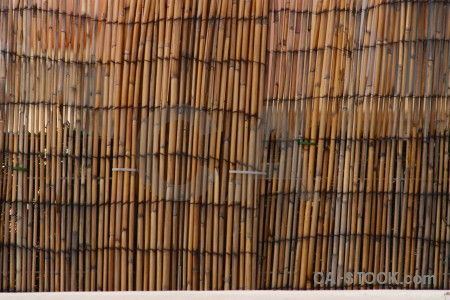 Nature texture wood stick bamboo.