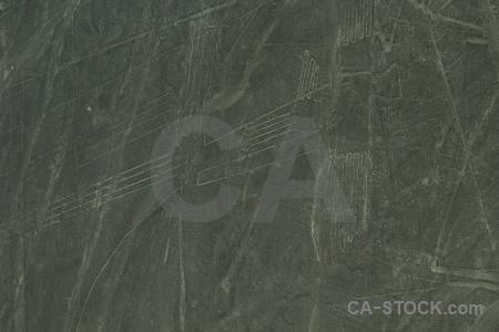 Nazca flying geoglyph nazca lines peru.