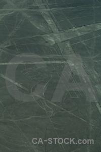Nazca lines peru geoglyph parrot south america.