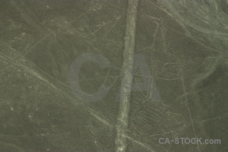Nazca lines south america unesco peru flying.