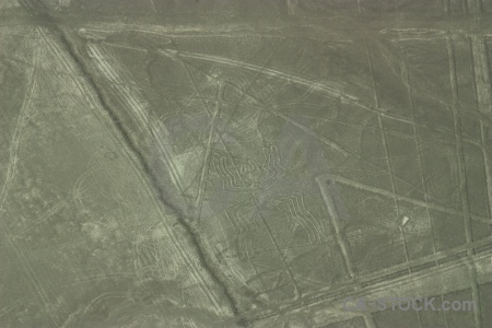 Nazca south america flying geoglyph insect.