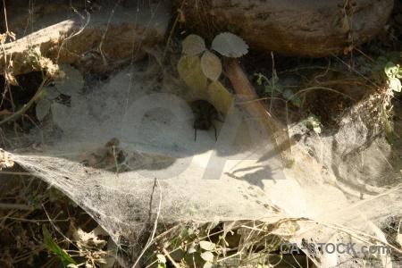 Nepal stone south asia modi khola valley web.