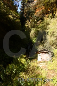 Nepal tree trek hut annapurna sanctuary.